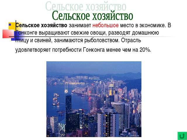 Сельское хозяйство занимает небольшое место в экономике. В Гонконге выращиваю...