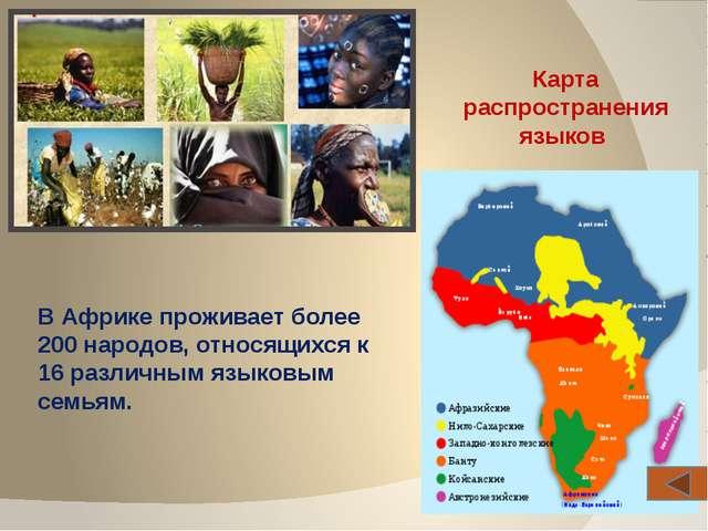 В целом густо населены долины Нила (1200 чел./км2), приморская зона - страны...
