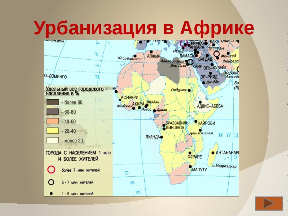Проверка знаний Кроссворд Тест Хапилина Е.Л.