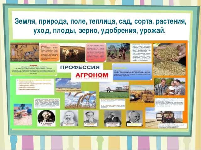 Земля, природа, поле, теплица, сад, сорта, растения, уход, плоды, зерно, удоб...