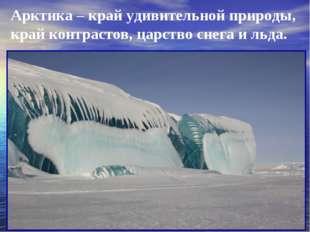 Арктика – край удивительной природы, край контрастов, царство снега и льда.