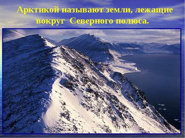 Арктикой называют земли, лежащие вокруг Северного полюса.