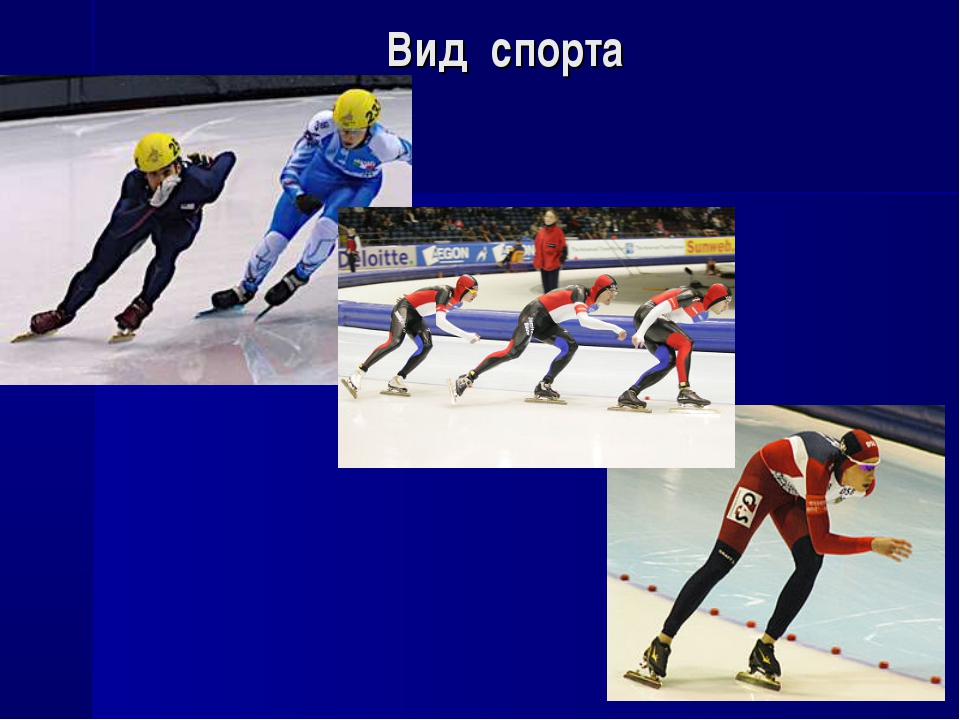 Вид спорта