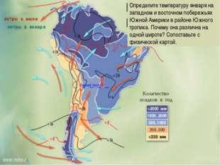 Определите температуру января на западном и восточном побережьях Южной Америк