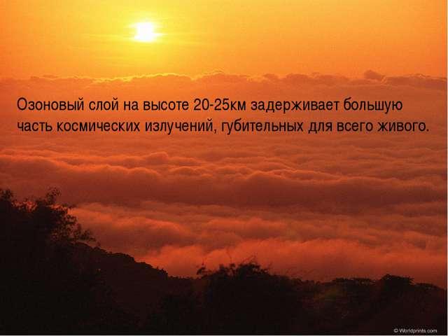 Озоновый слой на высоте 20-25км задерживает большую часть космических излучен...