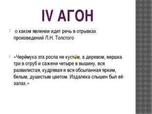IV АГОН о каком явлении идет речь в отрывках произведений Л.Н. Толстого «Черё