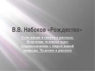 В.В. Набоков «Рождество» Тема жизни и смерти в рассказе. Исцеление человека ч