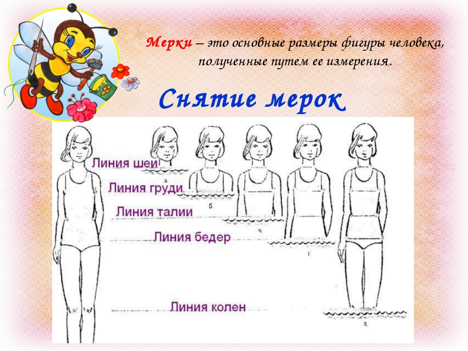 Снятие мерок Мерки – это основные размеры фигуры человека, полученные путем е...
