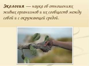 Экология — наука об отношениях живых организмов и их сообществ между собой и