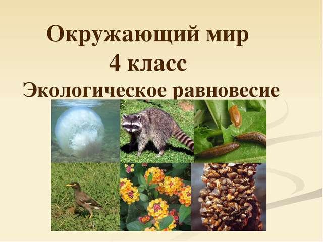Окружающий мир 4 класс Экологическое равновесие