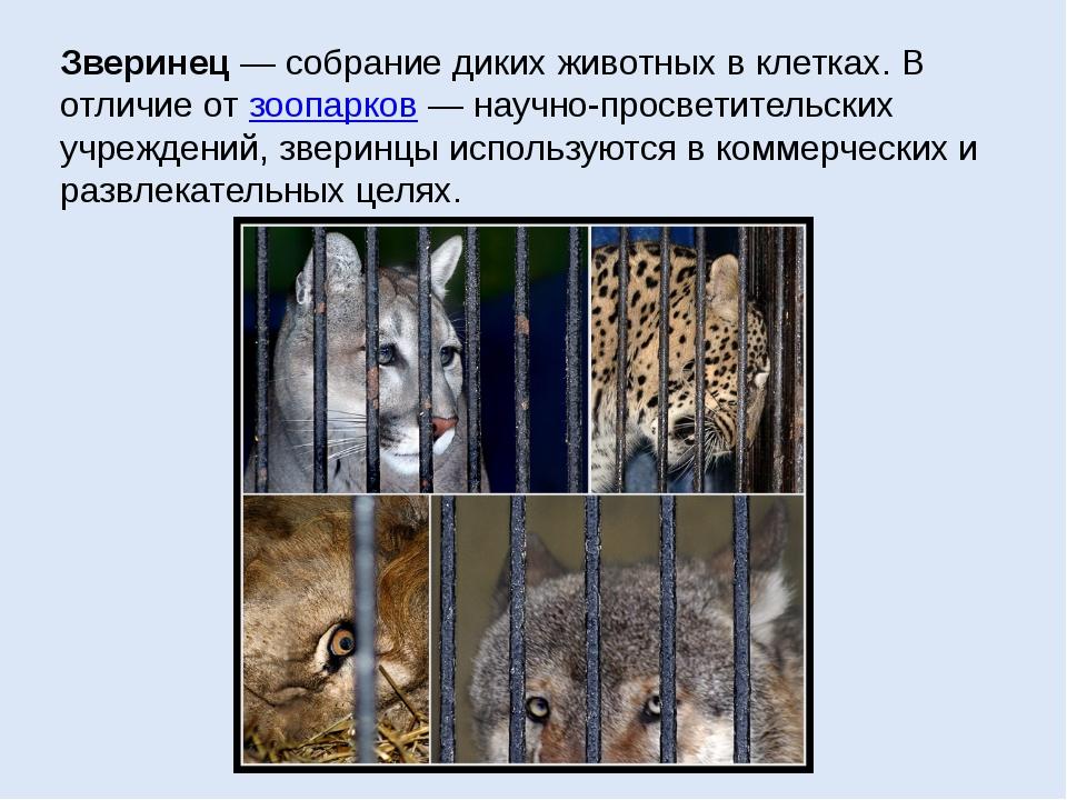 Зверинец— собрание диких животных в клетках. В отличие от зоопарков— научно...