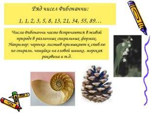 Ряд чисел Фибоначчи: 1, 1, 2, 3, 5, 8, 13, 21, 34, 55, 89… Числа Фибоначчи ча
