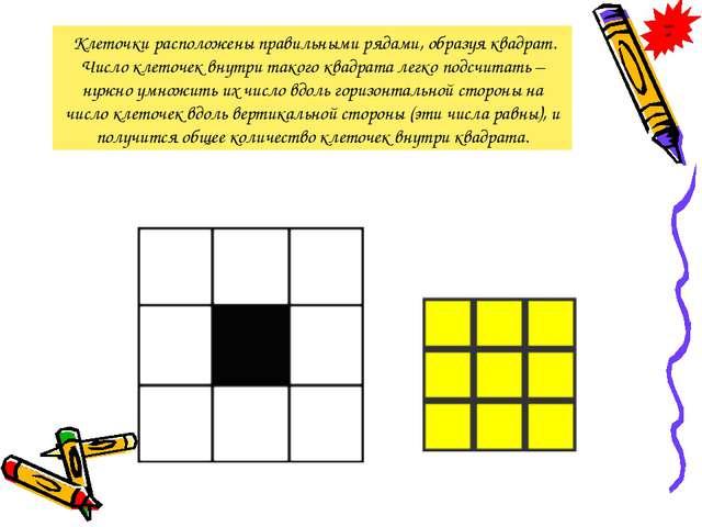 Клеточки расположены правильными рядами, образуя квадрат. Число клеточек вну...