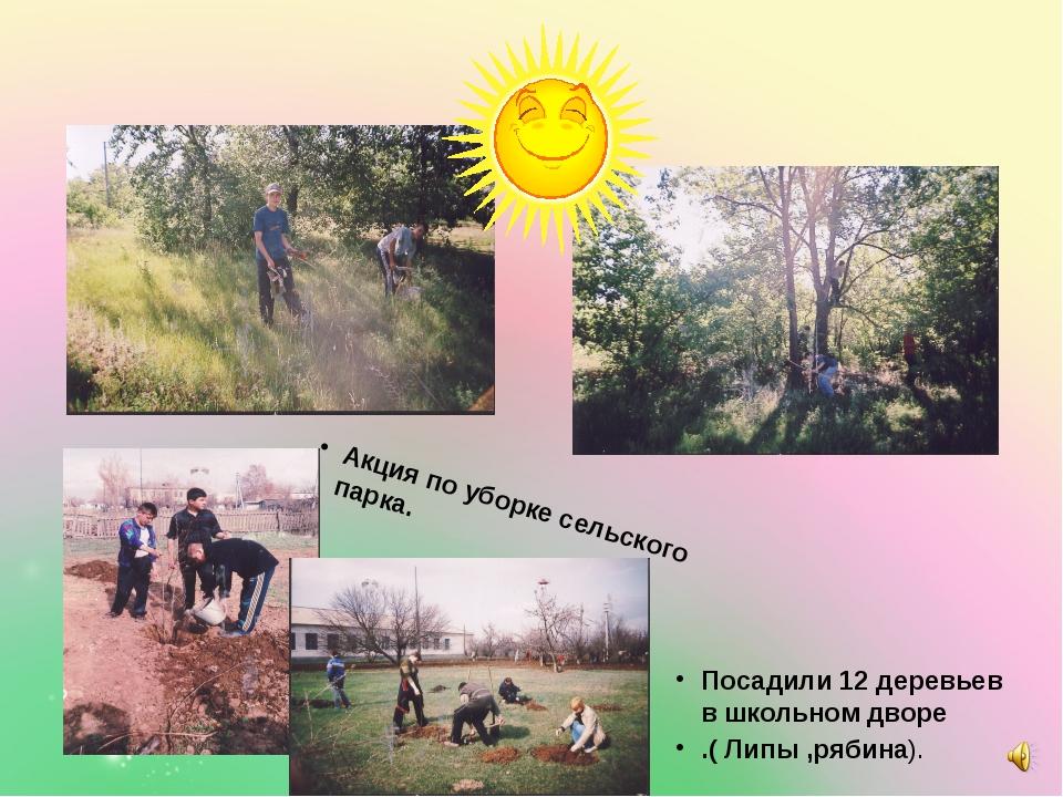 Посадили 12 деревьев в школьном дворе .( Липы ,рябина). Акция по уборке сель...