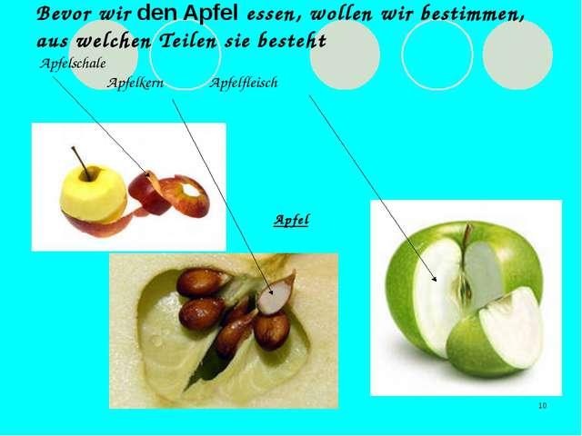 * Bevor wir den Apfel essen, wollen wir bestimmen, aus welchen Teilen sie bes...