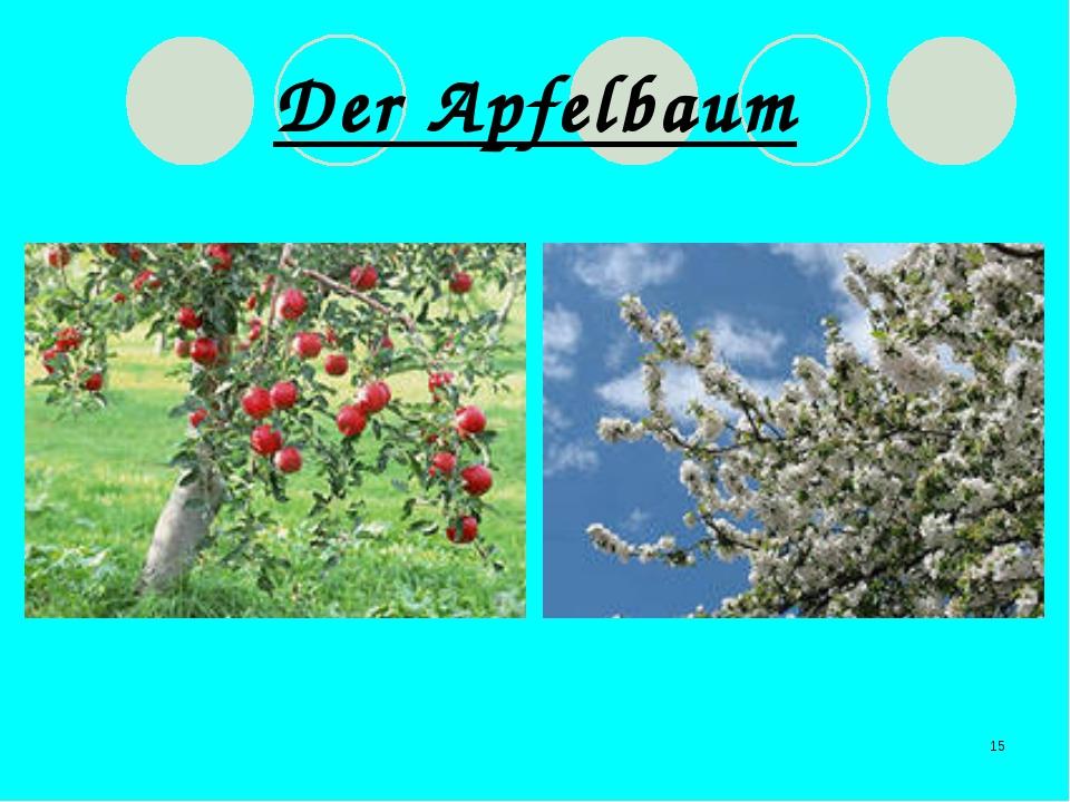 * Der Apfelbaum