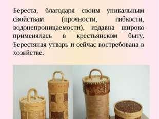 Художественная обработка бересты Береста, благодаря своим уникальным свойства