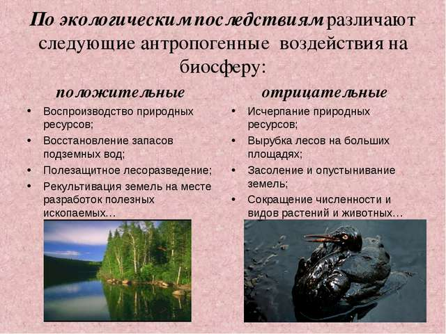 По экологическим последствиям различают следующие антропогенные воздействия н...