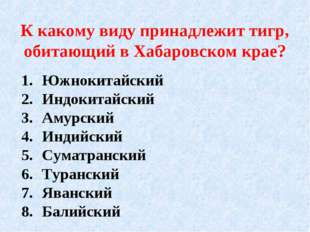 К какому виду принадлежит тигр, обитающий в Хабаровском крае? Южнокитайский И