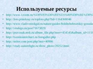 Используемые ресурсы http://www.1zoom.ru/%D0%93%D0%BE%D1%80%D0%BE%D0%B4%D0%B0