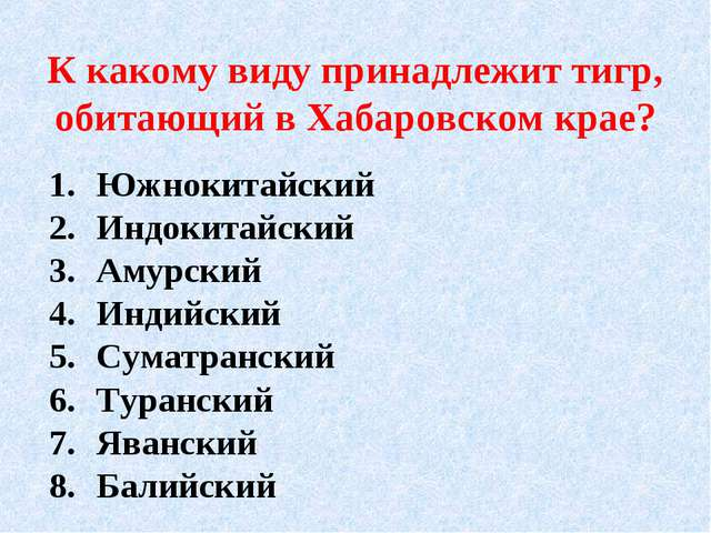 К какому виду принадлежит тигр, обитающий в Хабаровском крае? Южнокитайский И...