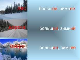 лес дорога озеро большое, зимнее большая, зимняя большой, зимний