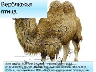 Интегрированный урок биологии и английского языка Игнатьевская Татьяна Никола