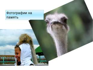 Фотографии на память http://kaifolog.ru/uploads/posts/2012-11/thumbs/13528842