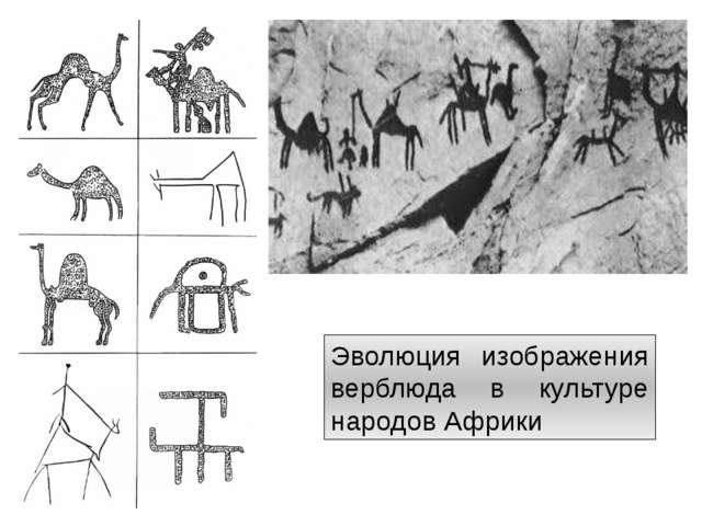 Эволюция изображения верблюда в культуре народов Африки http://artyx.ru/books...