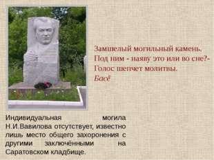 Индивидуальная могила Н.И.Вавилова отсутствует, известно лишь место общего за