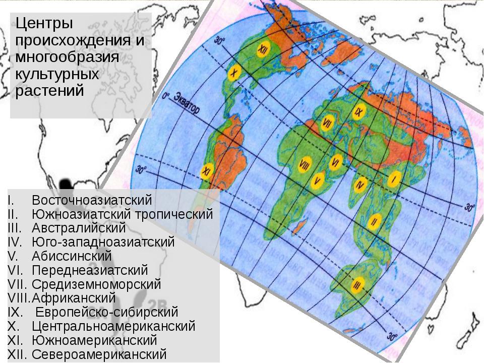 Центры происхождения и многообразия культурных растений Восточноазиатский Юж...