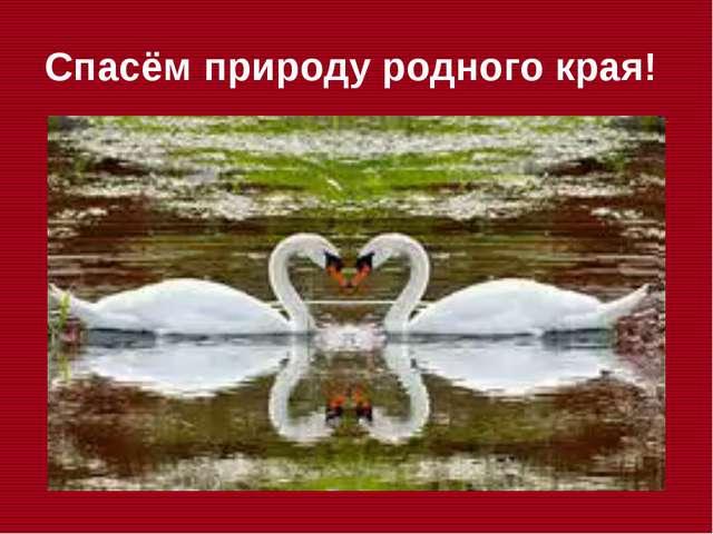 Спасём природу родного края!