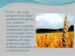 В 20-е – 30-е годы прошлого века бурно развивается хозяйство села: появился