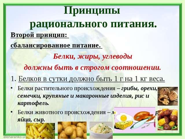 Второй принцип: сбалансированное питание. Белки, жиры, углеводы должны быть в...
