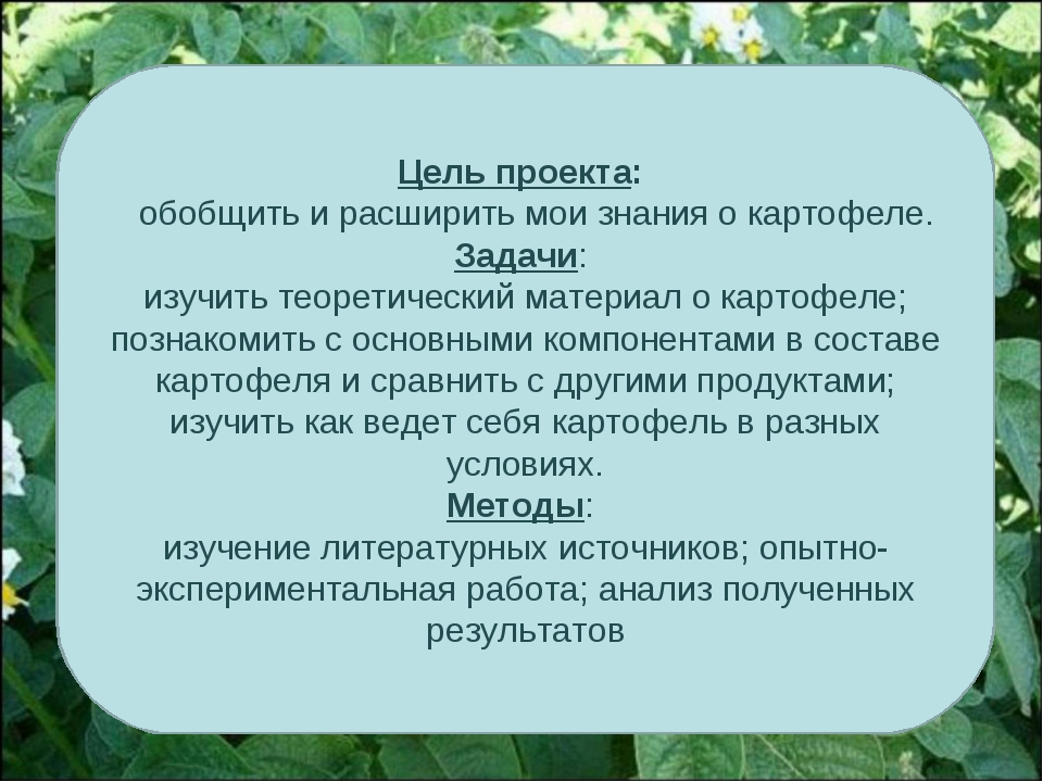 Цель проекта: обобщить и расширить мои знания о картофеле. Задачи: изучить те...