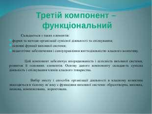 Складається з таких елементів: форми та методи організації сумісної діяльнос