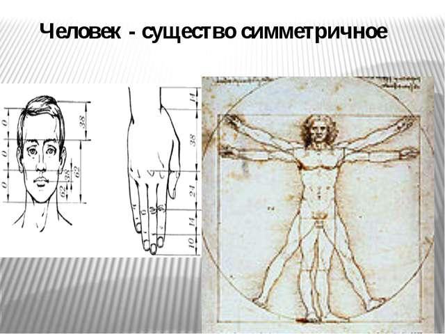 Человек - существо симметричное