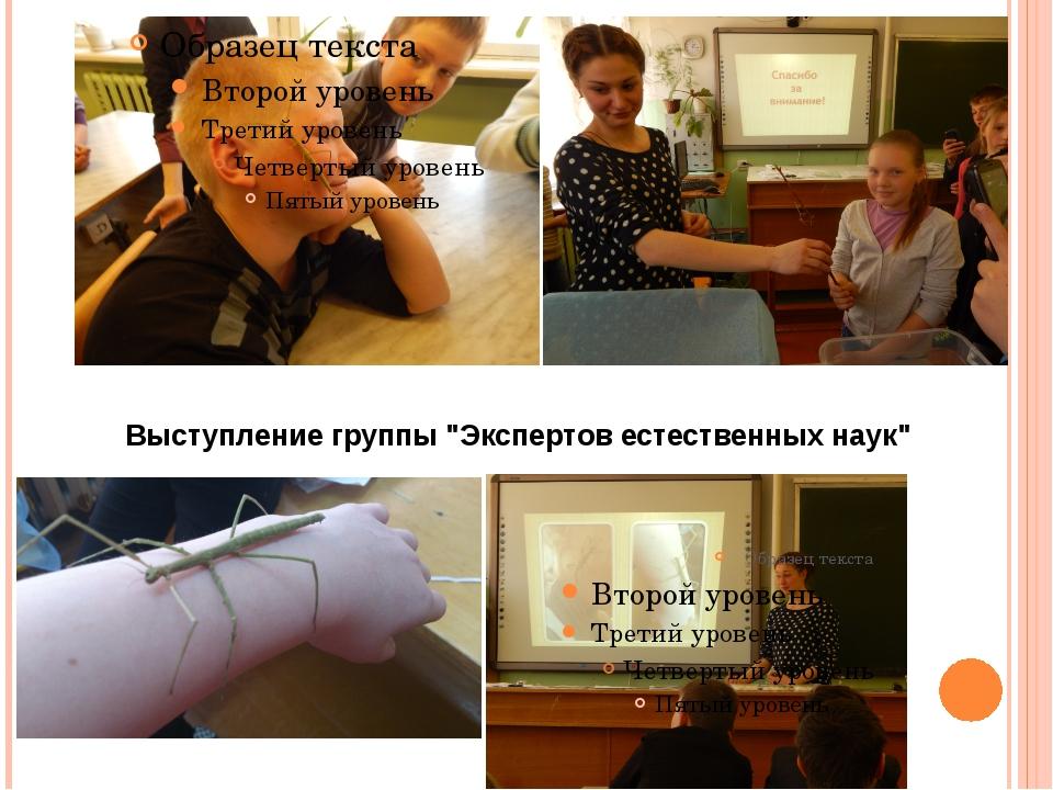"""Выступление группы """"Экспертов естественных наук"""""""
