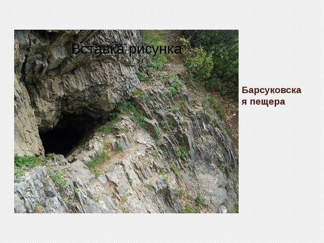 Барсуковская пещера
