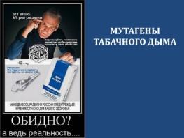 C:\Users\metodist\Desktop\Конференция Среда обитания\Болгарская палочка\Слайд7.JPG