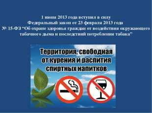 1 июня 2013 года вступил в силу Федеральный закон от 23 февраля 2013 года №