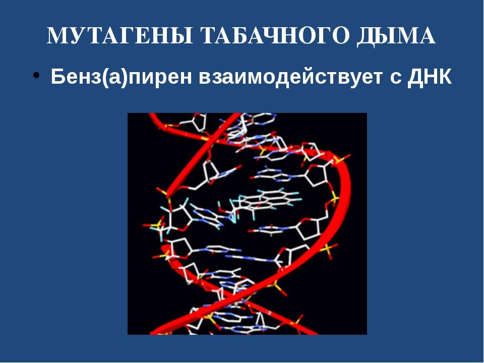 МУТАГЕНЫ ТАБАЧНОГО ДЫМА Бенз(а)пирен взаимодействует с ДНК