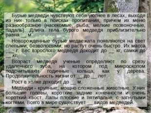 Бурые медведи чувствуют себя уютнее в лесах, выходя из них только в поисках п