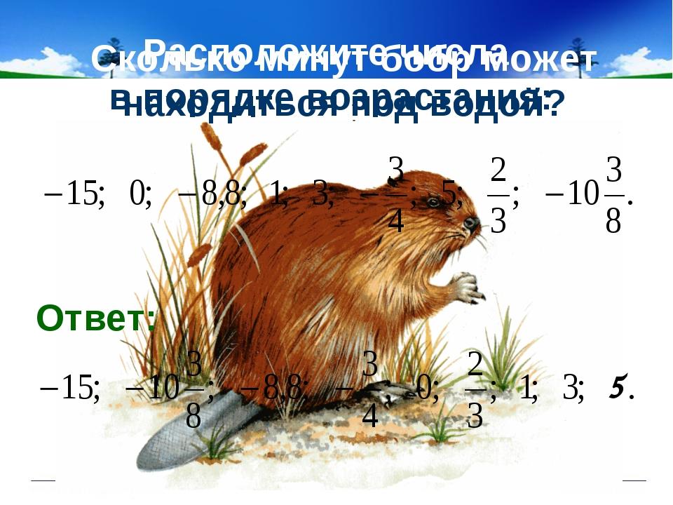Сколько минут бобр может находиться под водой? Расположите числа в порядке во...