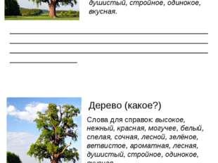 Дерево (какое?) Слова для справок: высокое, нежный, красная, могучее, белый,