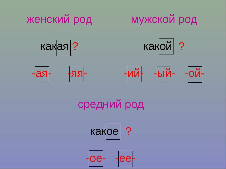 zhenskiy-polovoy-organ-iznutri-porno