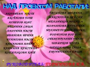РУКОВОДИТЕЛЬ:ПЕРМИНОВА Н.В. АКАКИЕВА НАСТЯ АКСЁНОВА ТОНЯ АХИЯРОВ АЗАТ ВЕСНИН