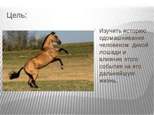 Цель: Изучить историю одомашнивания человеком дикой лошади и влияние этого со
