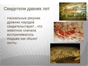 Свидетели давних лет Наскальные рисунки древних народов свидетельствуют , что