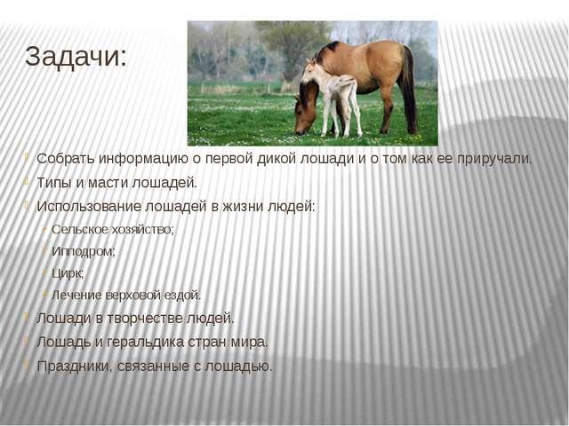 Задачи: Собрать информацию о первой дикой лошади и о том как ее приручали. Ти...